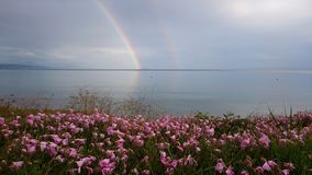 Double rainbow reflecting in the sea water after a rain storm Royalty Free Stock Photos