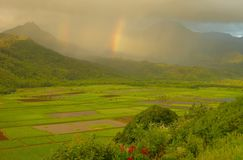Double Rainbows, Hanalei Valley. Double rainbows over the lush and verdant Hanalei Valley on the island of in Kauai in the Hawaiian Islands Royalty Free Stock Photos