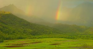 Double Rainbows, Kauai. Double rainbows appear over the lush and verdant taro fields of the Hanalei Valley on the island of Kauai in the Hawaiian Islands Stock Image