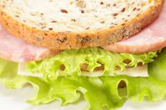 Double sandwich closeup Royalty Free Stock Image