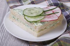 Double sandwich with cucumber, radish Royalty Free Stock Photo
