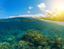 Double seaview. Underwater coral reef. Above and below waterline. Royalty Free Stock Image