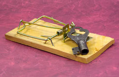 Double Security. Mousetrap and Key.  Security Concept Stock Images