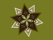 Double Star and Flower Royalty Free Stock Photography