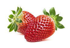Double strawberry facing each other  on white background Stock Image