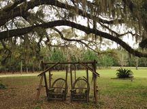 Double swing under the oak trees Royalty Free Stock Photography