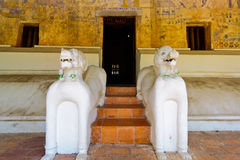 Double tigers stair at Wat Po Chai Royalty Free Stock Photo