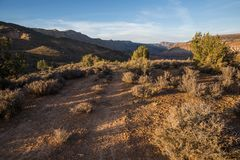 Double track ATV trail through desert sagebrush before sunset stock photos