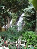 Double Tropical Waterfalls Royalty Free Stock Photo