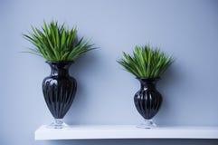 Double Vase Stock Image
