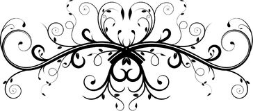Double Vine Flourish. With swirls and leaves Royalty Free Stock Image