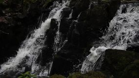 Video: Double waterfall with pure energy. Two waferfalls in a german bavarian forest. With Stones, trees and weeds next to it stock footage