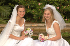 Double wedding Royalty Free Stock Images