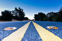 Double yellow line and reflective pavement markers Royalty Free Stock Images