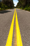 Double yellow lines on road into the distance Royalty Free Stock Photo