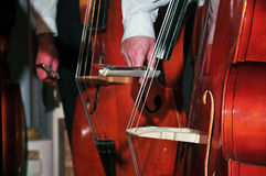 Doubles basses at work Royalty Free Stock Photo