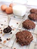 Doubles biscuits de chocolat image libre de droits
