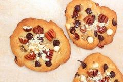 Doubles biscuits de puce de chocolat Photos stock