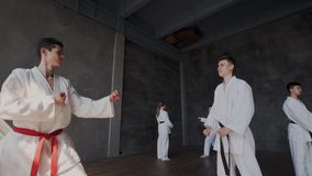 Doubles or duels in taekwondo school. Pupils stand in a fighting stance and carry out strikes. Forceful Attack and