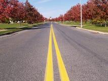 Doubles lignes jaunes sur une route Photographie stock