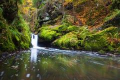 Doubravka flod i höst Fotografering för Bildbyråer