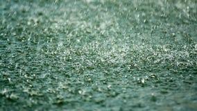 Douche, regendruppel die op de oppervlakte van het meer vallen stock videobeelden