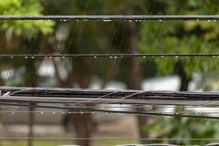 Douches d'après-midi dans les Caraïbe images stock