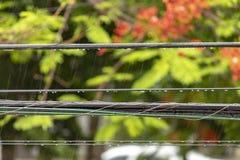 Douches d'après-midi dans les Caraïbe image libre de droits