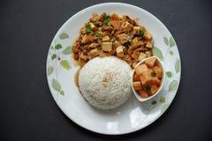 Doufu de Mapo com arroz Imagens de Stock Royalty Free