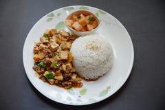 Doufu de Mapo com arroz Imagem de Stock