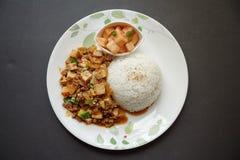 Doufu de Mapo com arroz Fotografia de Stock Royalty Free