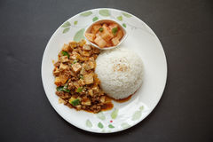 Doufu Mapo с рисом Стоковая Фотография RF