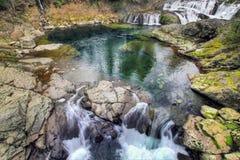 Dougan Falls in Washington Royalty Free Stock Photography