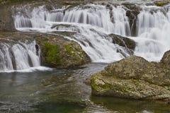 dougan falls washington Fotografering för Bildbyråer
