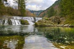 dougan falls washington Arkivfoto