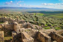 Dougga Medina, das eine olivgrüne Plantage, Tunesien übersieht lizenzfreies stockfoto