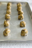 Dough Balls. Rows of chocolate chip dough balls on baking sheet Royalty Free Stock Photography