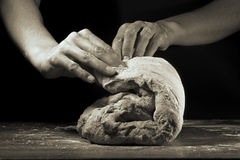 Dough bw toned. Women's hands knead the dough on a black background Stock Images