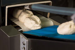 Dough on the conveyor. Stock Image