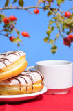 Doughnut Breakfast with tea outdoor royalty free stock photography