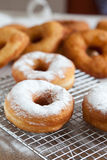Doughnut with icing sugar Stock Photos