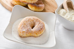 Doughnuts. Royalty Free Stock Images