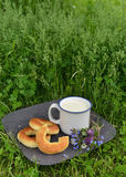 Doughnuts, flowers and milk in cup on grass Stock Images
