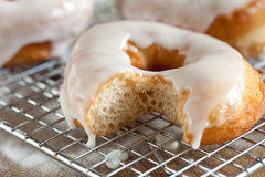 Doughnuts with fresh icing Royalty Free Stock Photography