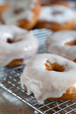 Doughnuts with fresh icing Stock Photos