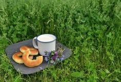 Doughnuts and milk in grass horizontal Stock Image