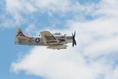 Douglas AD-4NA Skyraider en la exhibición Imágenes de archivo libres de regalías