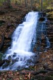 douglas falls Royaltyfri Bild
