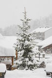Douglas, montagne nevicate, Pirenei Immagine Stock Libera da Diritti