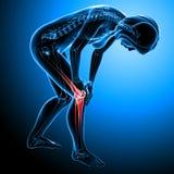 Douleur femelle de genou illustration stock
